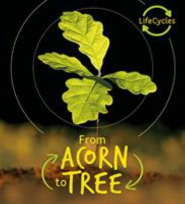 Acorn to Tree (Lifecycles)