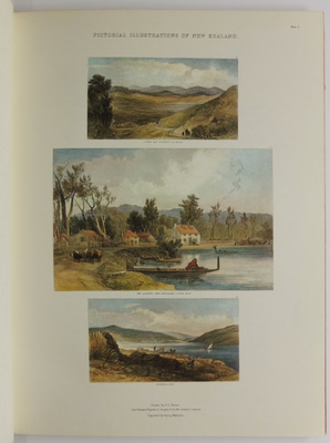 Pictorial Illustrations of New Zealand