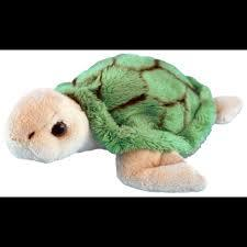 Mini Green Turtle