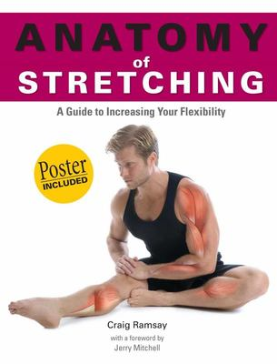 Anatomy of Stretching: A Guide to Increasing Flexibility