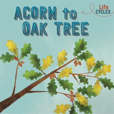 Life Cycles: Acorn to Oak Tree