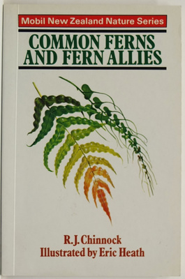 Common Ferns and Fern Allies