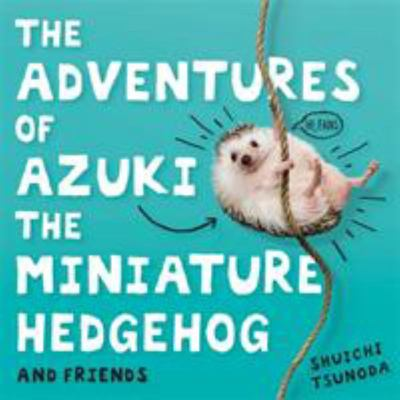 The Adventures of Azuki the Miniature Hedgehog