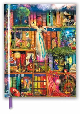 Aimee Stewart: Treasure Hunt Bookshelves (Blank Sketch Book)