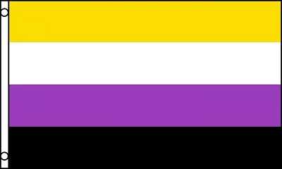 Flag – Non Binary Pride 2ft x 3ft (Polyester)