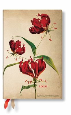 2020 Gloriosa Lily Mini Day-at-a-Time