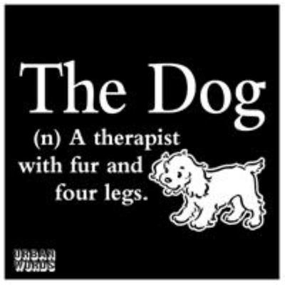 Urban Words: the Dog