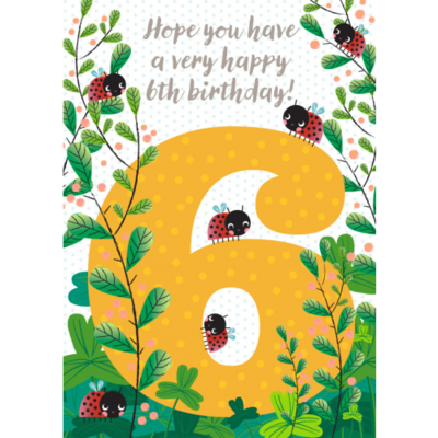 6th Birthday Ladybugs - Little Red Owl