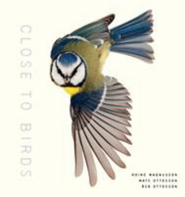 Close to Birds - An Intimate Look at Our Feathered Friends