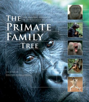 The Primate Family Tree - The Amazing Diversity of Our Closest Relatives