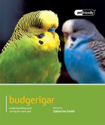 Budgerigar: Pet Friendly - Budgerigar