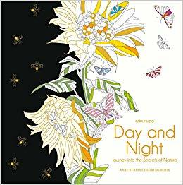 DAY AND NIGHT Journey into the Shades of Night
