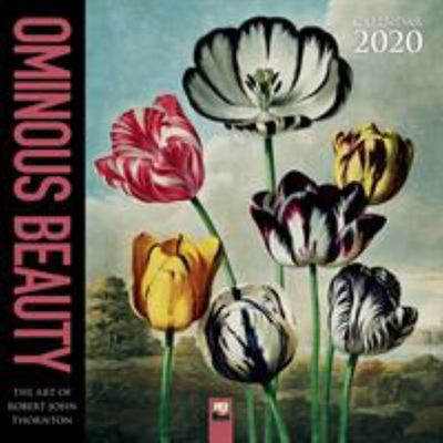 2020 Ominous Beauty - the Art of Robert John Thornton Wall Calendar  FLT-CAL2020_90