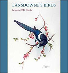 Lansdowne's Birds 2020 Wall Calendar