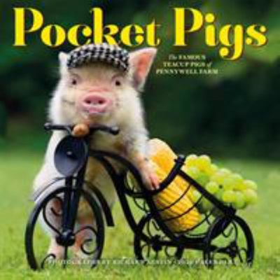 2020 POCKET PIGS WALL CALENDAR