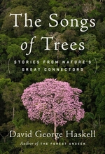 Homepage_songs-of-trees-stories-from-natures-great-connectors-the