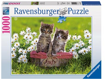 Ravensburger -  Picnic In The Meadow 1000pc