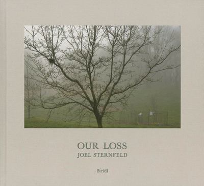 Joel Sternfeld: Our Loss - Our Loss
