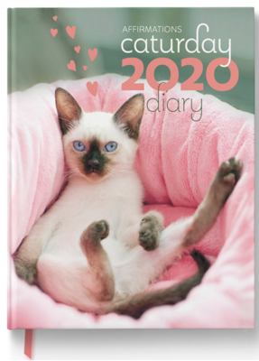 Large_caturday_2020_diary