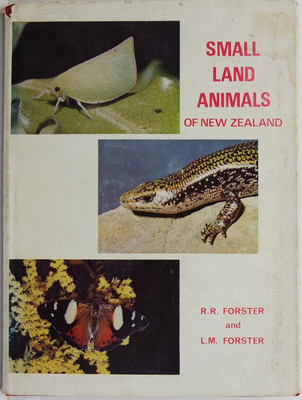 Small Land Animals of New Zealand