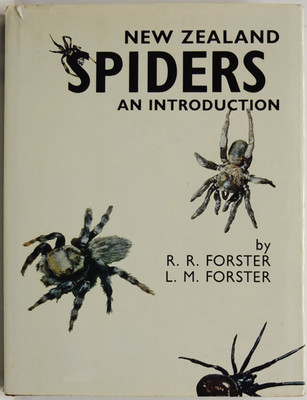 New Zealand Spiders An Introduction