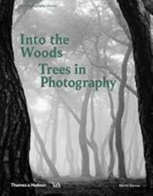 Into the Woods - Trees and Photography
