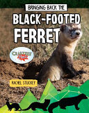 Bringing Back the Black-Footed Ferret