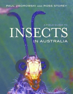 A Field Guide to Insects in Australia 4th edition