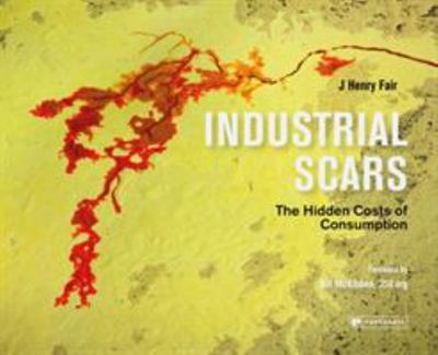 Industrial Scars - The Hidden Cost of Consumption
