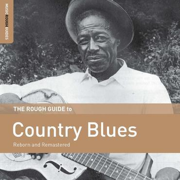 A Rough Guide To Country Blues - Various (LP)