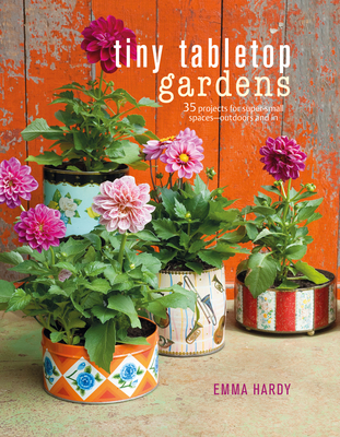Large_tiny_tabletop_gardens