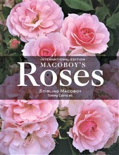 Homepage_macoboy-s_roses