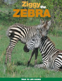 Ziggy the Zebra - True to Life Adventures