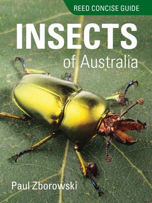 Insects of Australia (Reed Concise Guide)