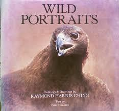 Wild Portraits - Paintings & Drawings by Raymond Harris-Ching