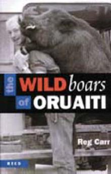 The Wild boars of Oruaiti