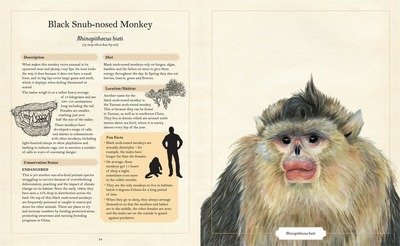 The Illustrated Encyclopaedia of Ugly Animals (HB)