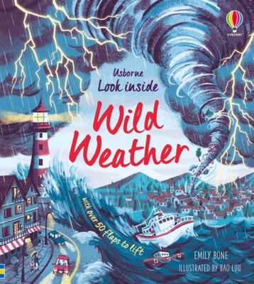 Look Inside Wild Weather (Lift-the-Flap Board Book)