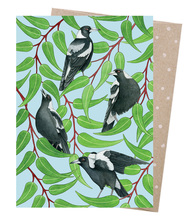 Homepage magpies warble card
