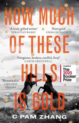 How Much of These Hills Is Gold - Booker Longlist 2020