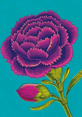 Art Press - Pink Carnation - Card
