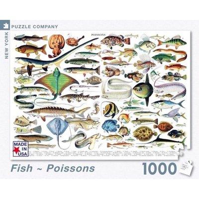 1000 piece Puzzle - Fish/Poissons