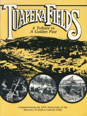 Tuapeka Fields A Tribute to a Golden Past