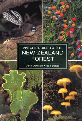 Nature Guide to the New Zealand Forest