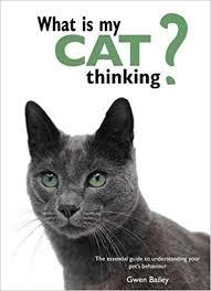 What Is My Cat Thinking?The Essential Guide to Understanding Your Pet