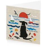 Homepage card   sea dog