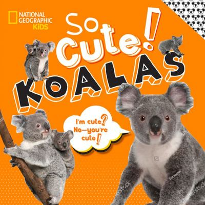 So Cute ! Koalas