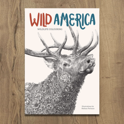 Large colouringbook wildamerica 2048x2048
