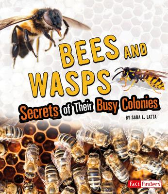 Bees and Wasps: Secrets of their Busy Colonies (Fact Finders)
