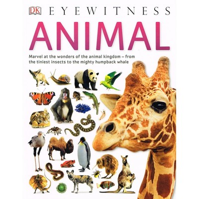 Large_eyewitness_animal_cover-800x800